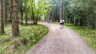 Rennsteiglauf Supermarathon Strecke