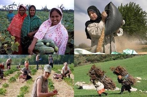 الرجل بين المرأة الريفية والمدنية؟