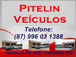 Pitelin Veiculos