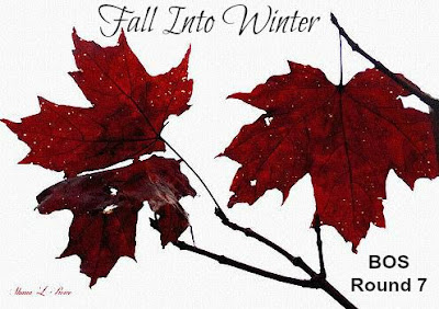 "BOS Round 7 Theme ""Fall Into Winter"""