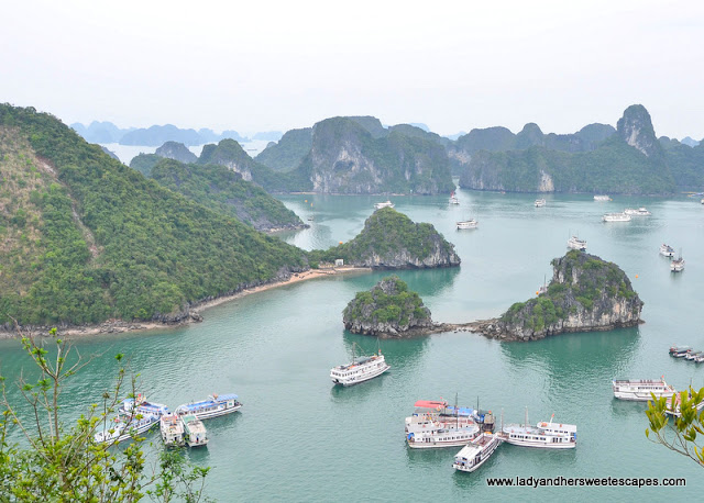 view of Halong Bay from the top of Ti Top Island