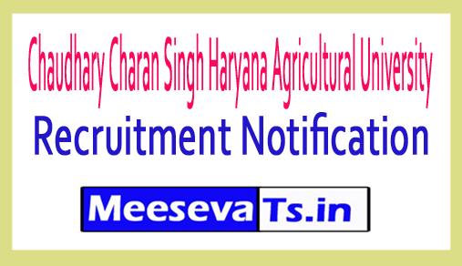 Chaudhary Charan Singh Haryana Agricultural University CCS HAU Recruitment