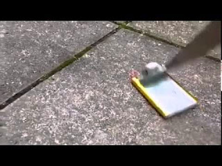 poking phone battery