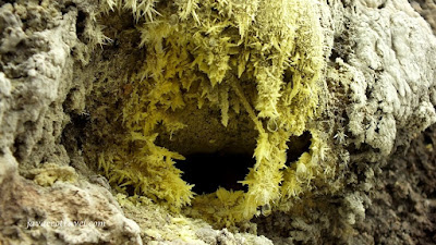 Sulfur Spike