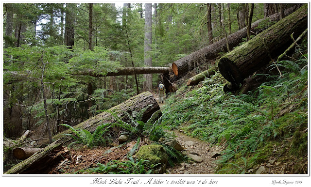 Mink Lake Trail: A hiker's toolkit won't do here