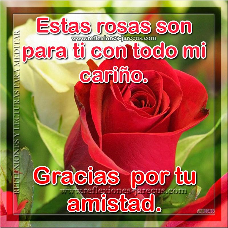 Estas rosas son para ti con todo mi cariño. Gracias por tu amistad