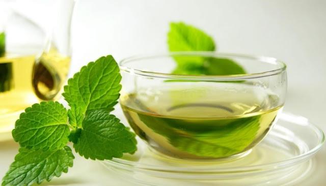 minuman daun mint