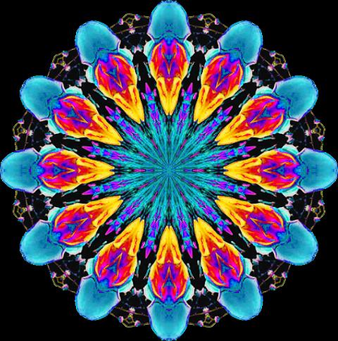 Textile Design Vector flower art Design PNG 2351