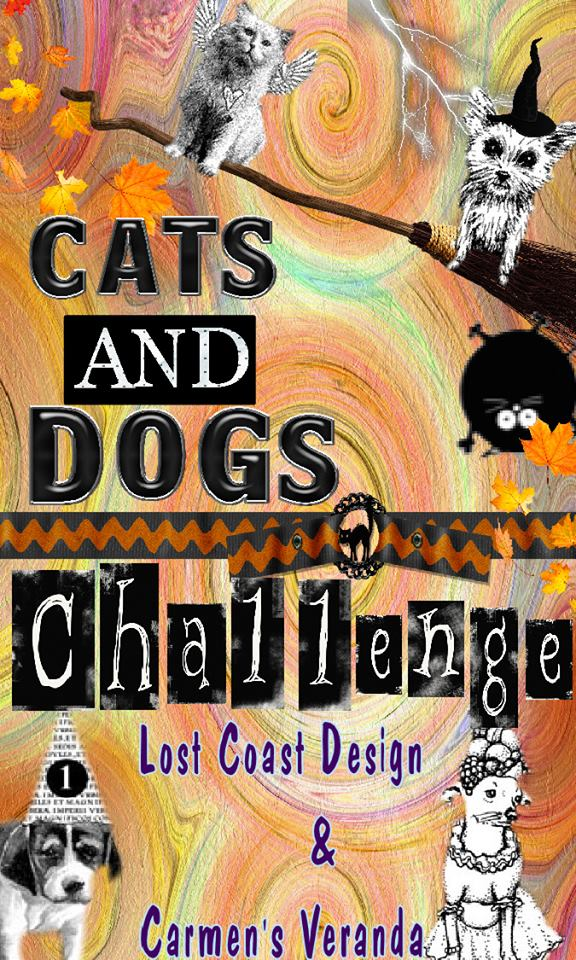 CHALLENGE #63 - CATS AND DOGS