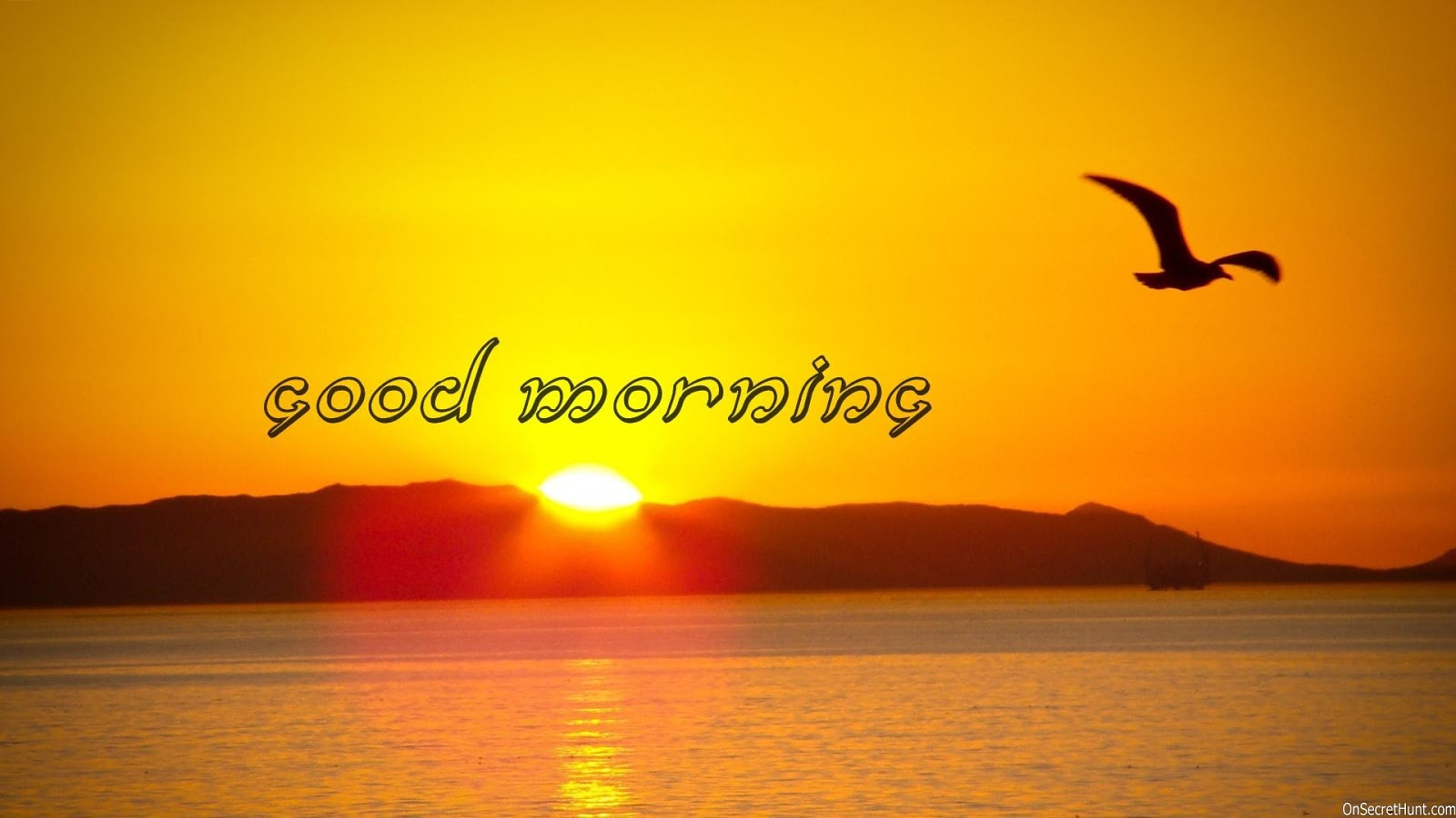 Good Morning Winter Sms : Best good morning status sms message shayari wishes in hindi