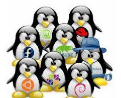 Descargar UbuntuBSD Linux Gratis