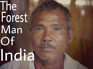 the-forest-man-of-india