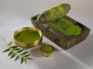neem benefits for hair in urdu