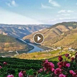 https://www.facebook.com/absolutoportugal/videos/10153773516028935/
