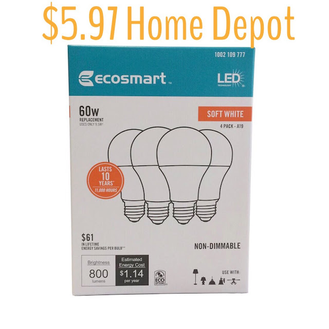economical led bulbs from home depot