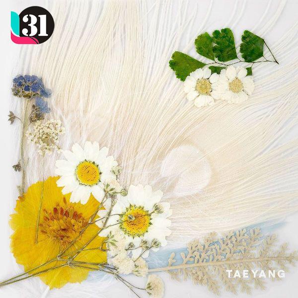 Download [Lyrics] Taeyang – White Night (白夜)