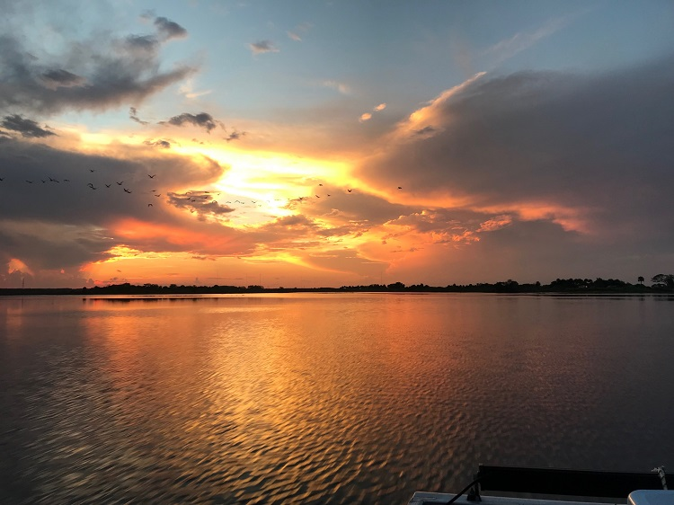 Capt Duke's Air Boat Ride, St Johns River Sunset