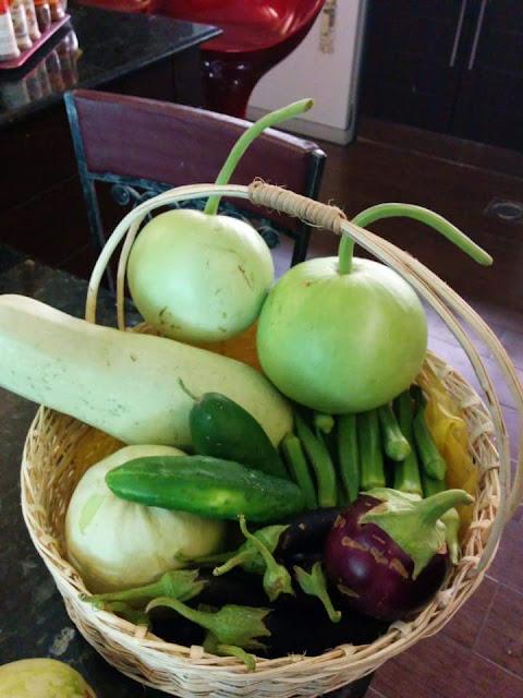 Tanaman buncis paling banyak ditanam oleh petani