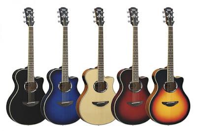 Đàn Guitar Acoustic APX-500III: Đánh giá chất lượng chi tiết