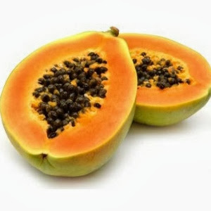 Pepaya atau Carica papaya L yaitu flora yang habitat aslinya di hutan tropis Klasifikasi Pepaya dan Morfologinya