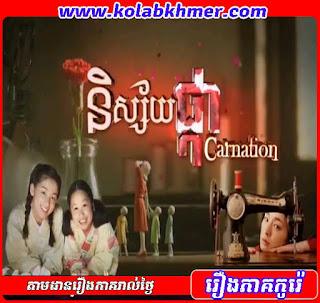 Nisai Phka Carnation
