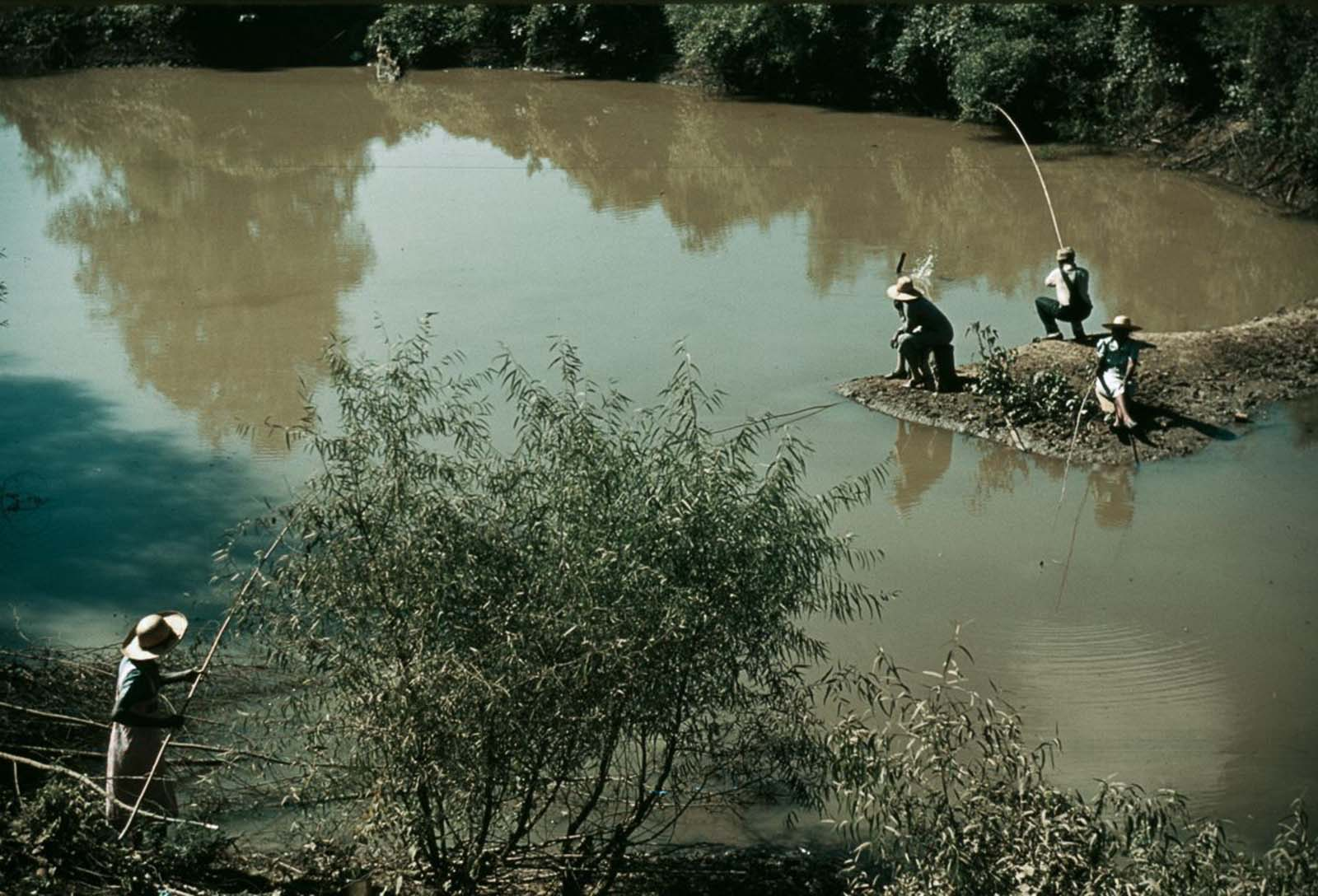 People fish in a creek near Belzoni, Mississippi. 1939.