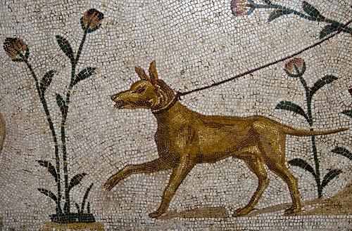 αρχαιο ψηφιδωτο σκυλου