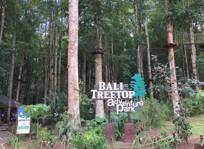 Spot Bali Treetop Adventure Park