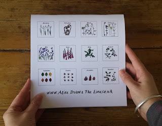 Birthday Calendar or Special Events Calendar by Alice Draws The Line back