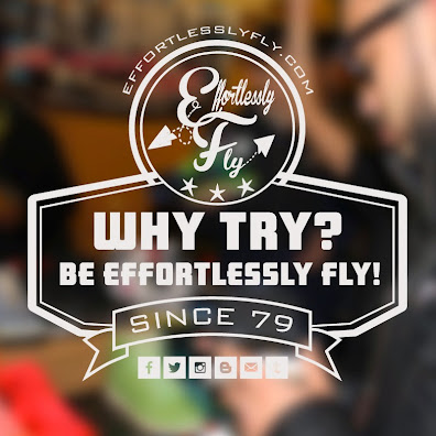 Why TRY? Be effortlessly FLY!