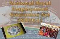 MGNREGA Kapurthala Jobs 2019- Gram Rozgar Sewak, Asst 31 Posts