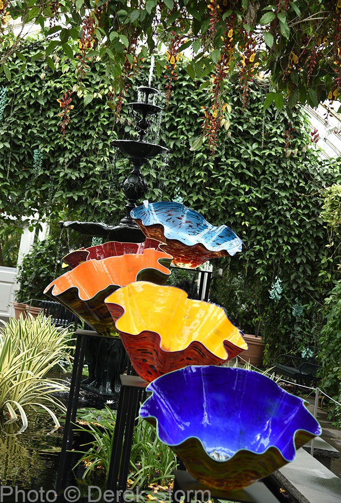 In The News Dale Chihuly Exhibits At The Bronx Botanical