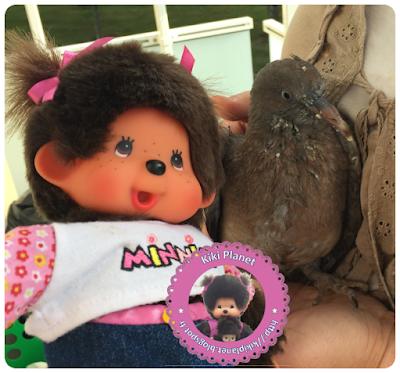 Diana la Monchhichi et Colombine le bébé pigeon - oisillon - pigeonneau - oiseau