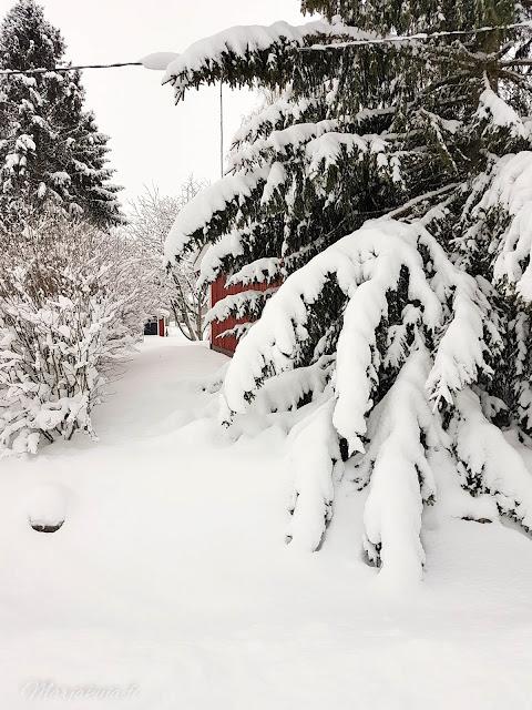 piha talo lunta talvi punavalkoinen koti pakkasta aurinko lumisade lumipeite talvinen
