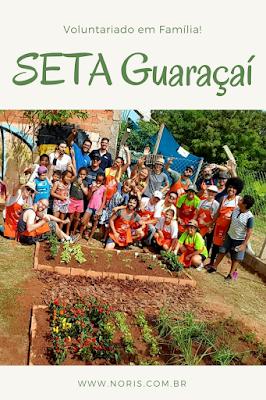 Foto com todos os voluntários em frente a horta plantada no mutirão organizado pela Fundação FEAC em benefício da SETA Campinas.