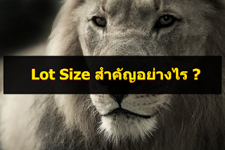 Lot Size คืออะไร Forex