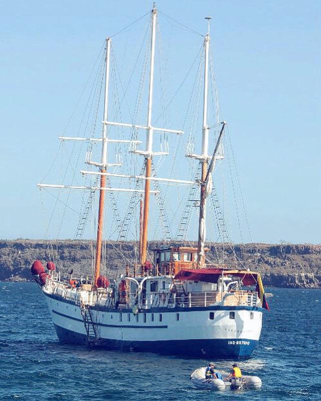 Connys Reiseblog alias paulabloggt®: Das Schiff fängt vorne an