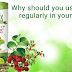 Why Should You Use Giloy Regularly in Your Diet?