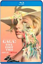 Gaga: Five Foot Two (2017) HD 720p Subtitulados