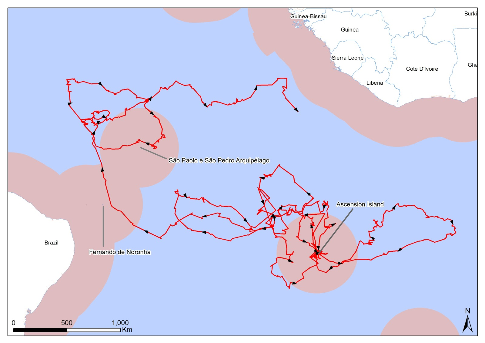 map of the journey of a juvenile ascension frigatebird that led to the first record in the americas the pink areas constitute the exclusive economic zones