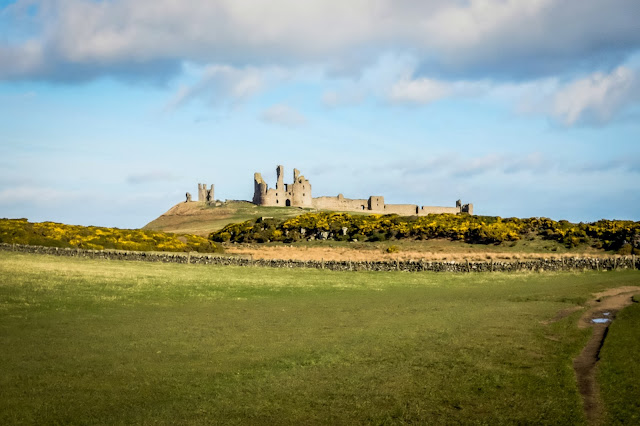 dog friendly holiday cottages in embleton, northumberland, mandy charlton, photographer, writer, blogger
