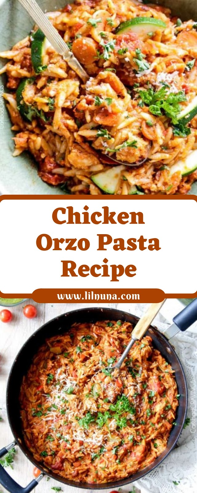 Chicken Orzo Pasta Recipe