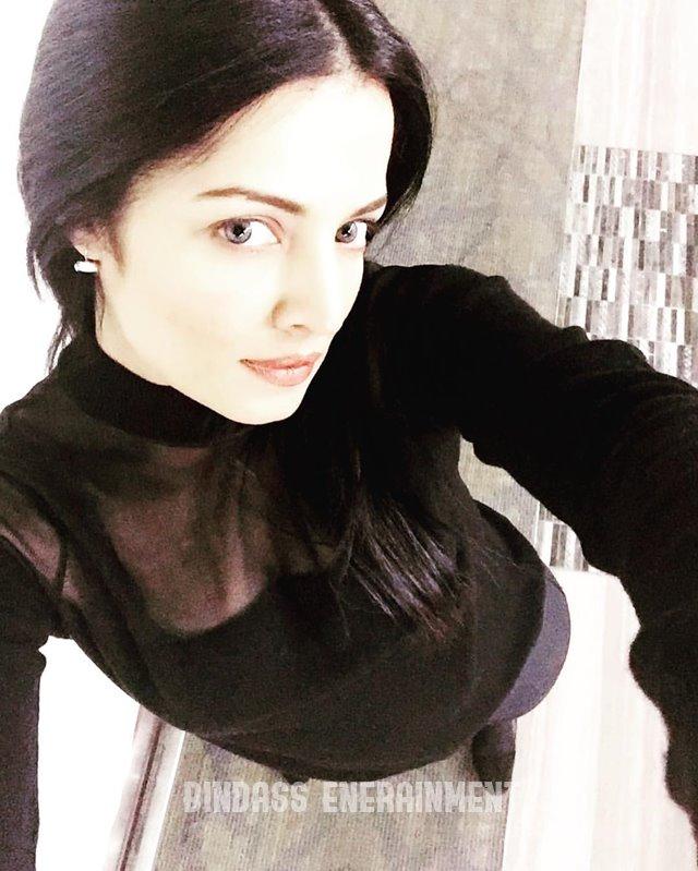 Celina Jaitly 3