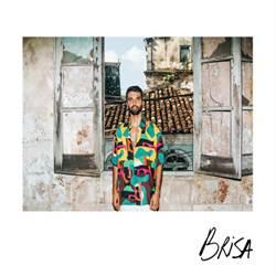 Brisa - Silva