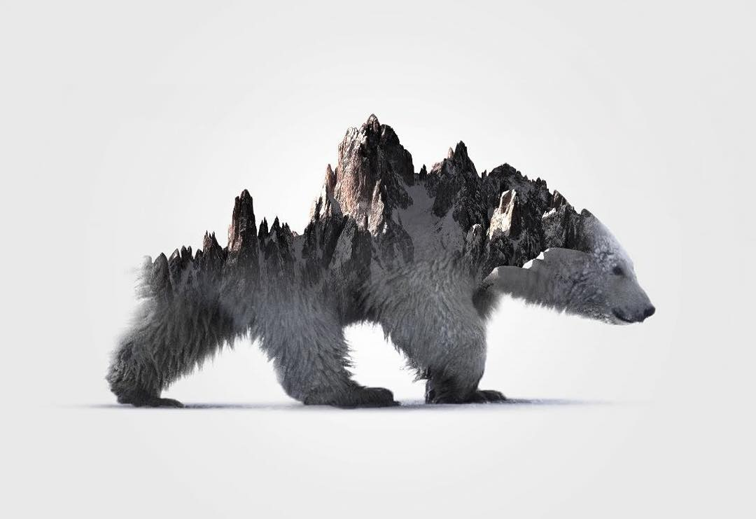 16-Polar-Bear-Alexis-Nevess-nevessart-Photographic-Double-Exposures-of-people-and-Animals-www-designstack-co
