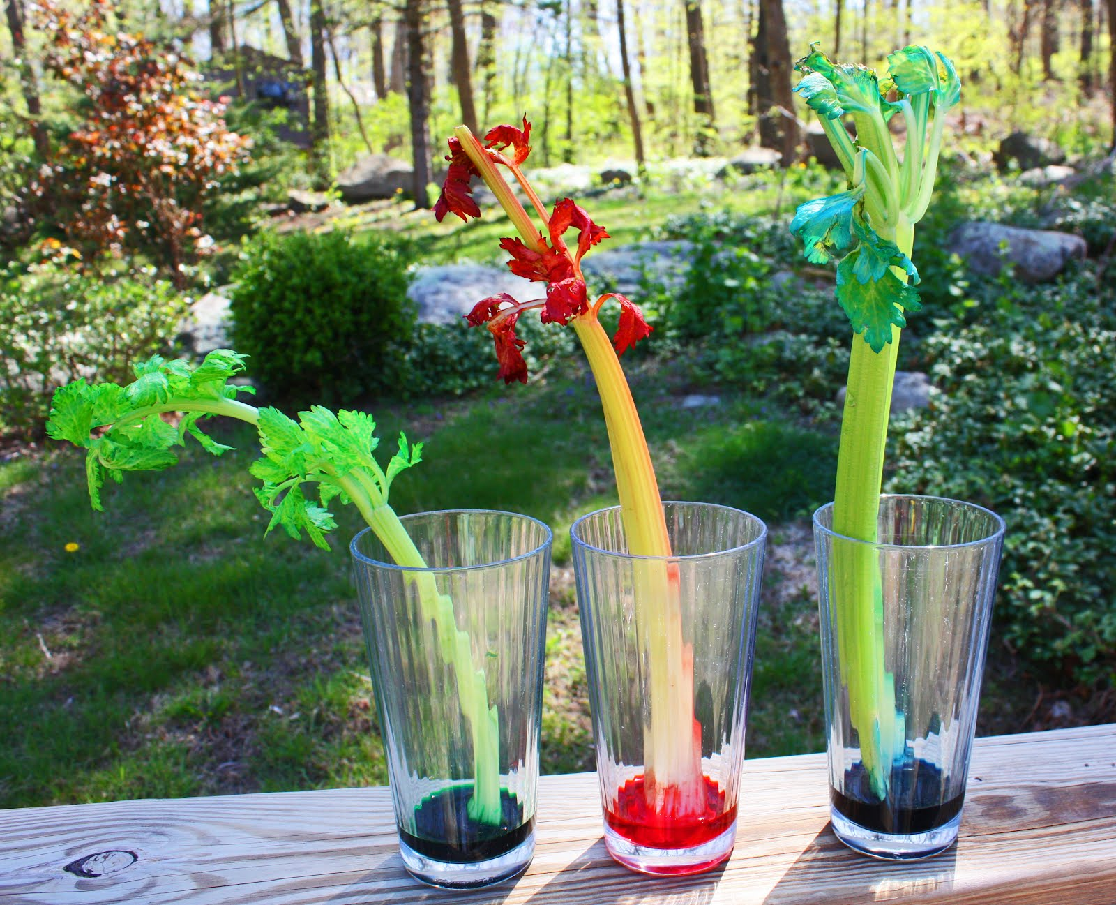 Considering Celery