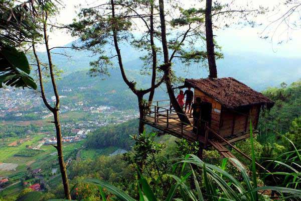 Wisata Alam Rumah Pohon di Hutan Malabar, Malang