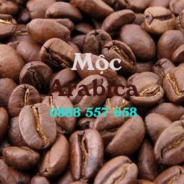 Cà phê Arabica mộc