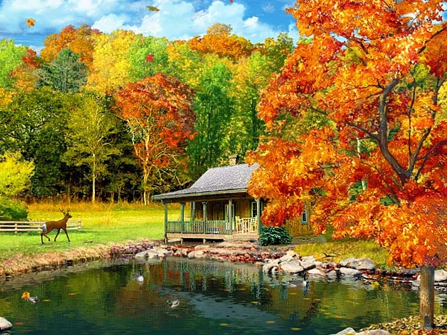 amazing fall foliage wallpapers - photo #41