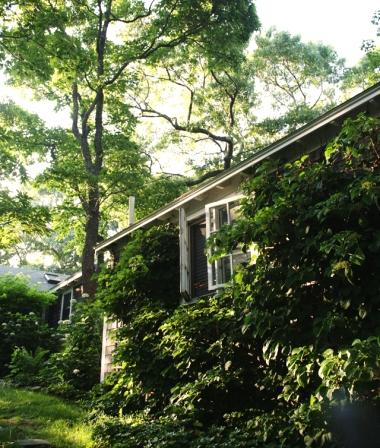 cottage tour on Martha's Vineyard